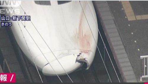 52歳介護士 顔画像は?のぞみ事故は自殺か?新幹線を選んだ訳は?