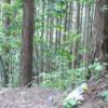 芥川豊史、顔画像、自殺動機は?前科がせこく笑える!静岡看護師遺棄事件