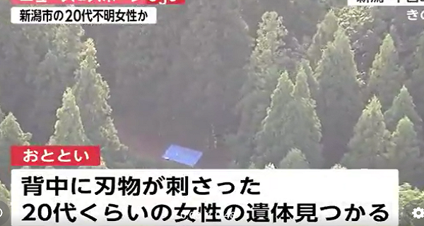 新潟林道遺体は谷愛美さん。顔画像、SNSは?犯人は?20代女性要注意!